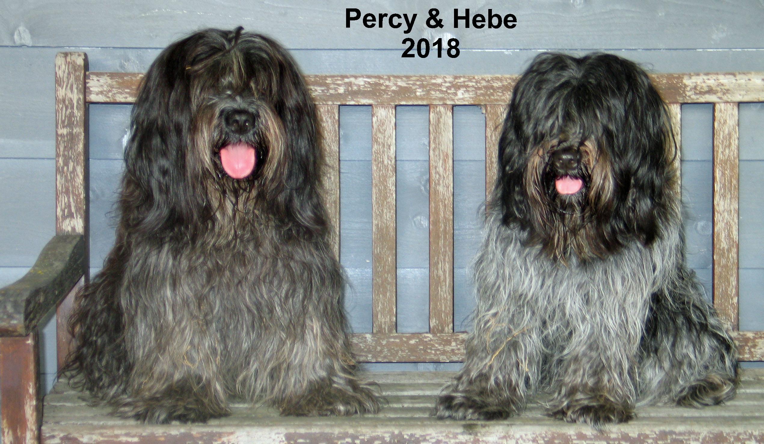 Percy en Hebe